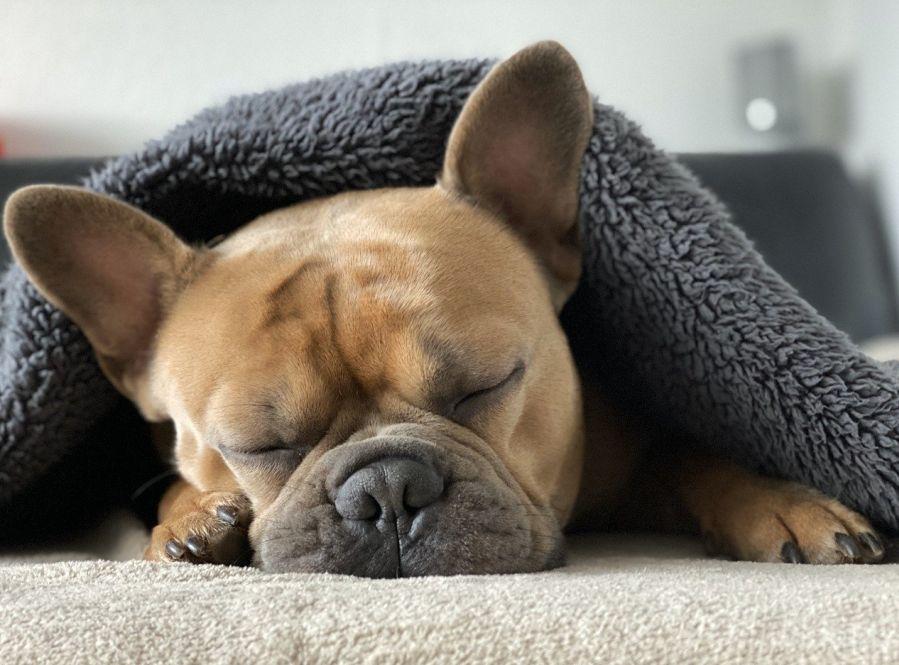 Tänk att sömn kan göra så stor skillnad!